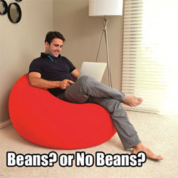 Beanless Bag Chairs